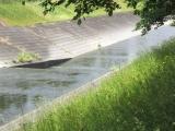 教会前を流れる川<乞田川(こったがわ)>
